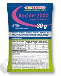 KOCIDE 2000